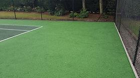 Tennis Court Moss