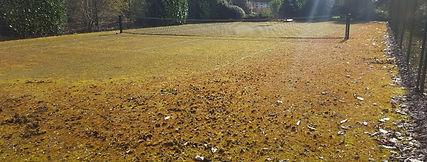 Tennis Court Maintenance www.absolutetenniscourts.com