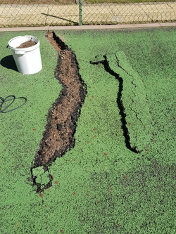 Tree root damage surface is removed