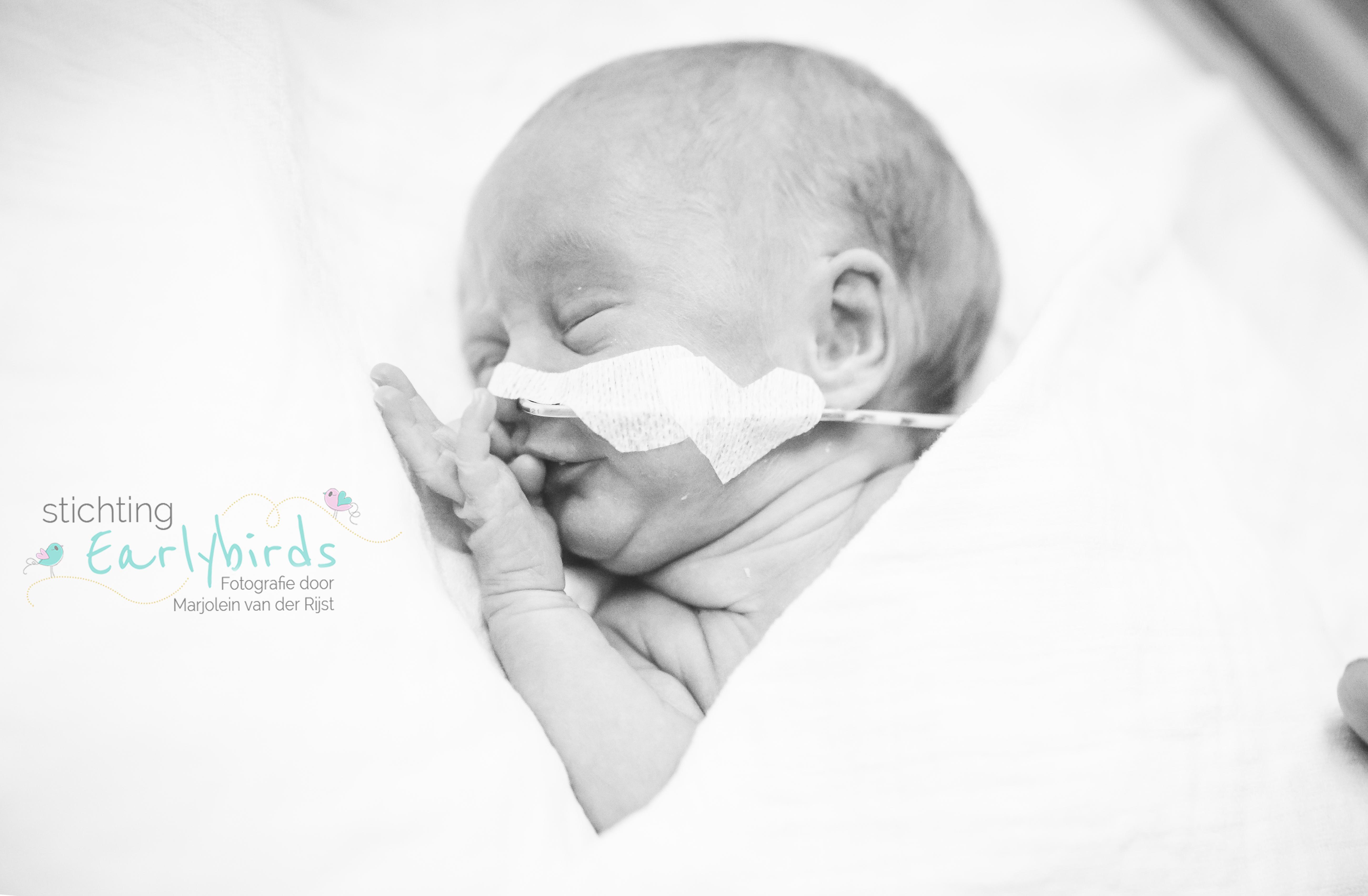 Newborn Fotografie, Lifestyle