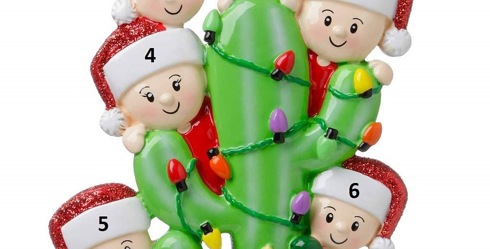 OR1673-6 - Cactus Family of 6