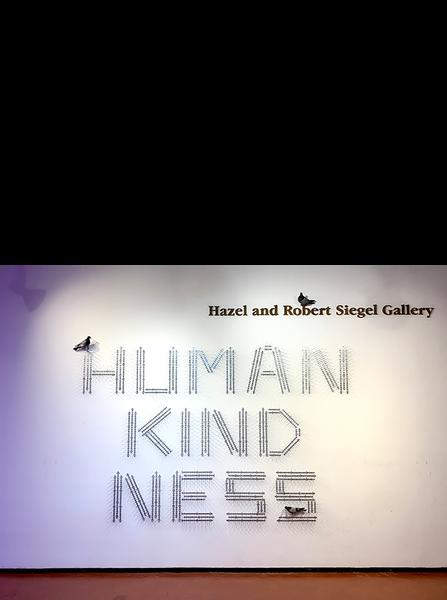 HUMAN KIND NESS, 2019