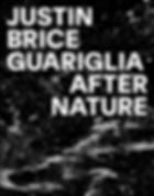 justinguariglia_cover.jpg