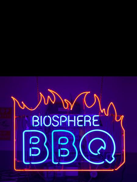 Biosphere BBQ, 2019