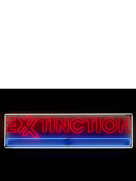 EXXTINCTION, 2019