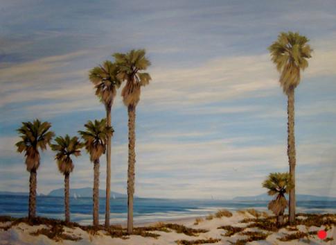 Mandalay Beach thru the Palms