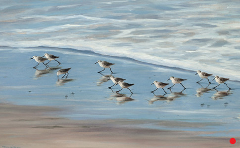 Happy Little Sandpipers