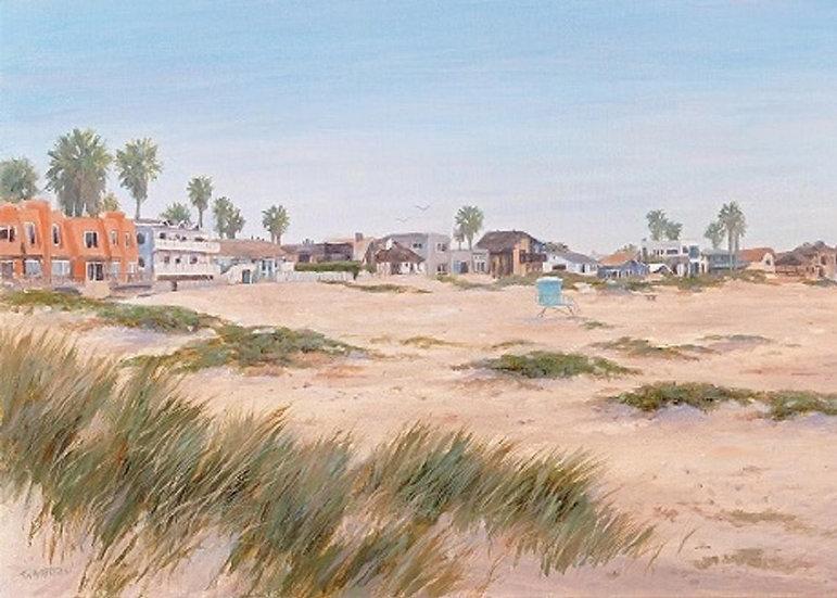 Pierpont Beach Sand Dunes