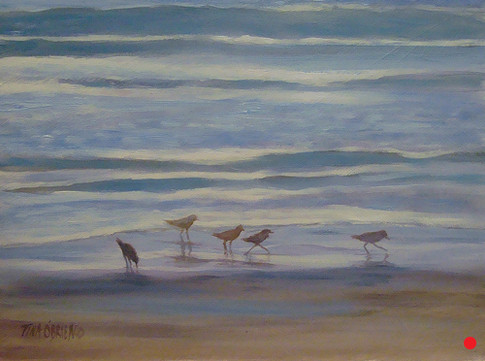 Little Sandpipers I
