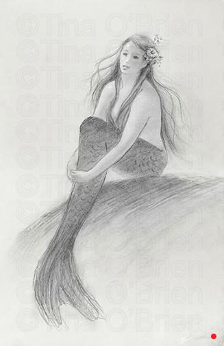 Mermaid in the Sunshine