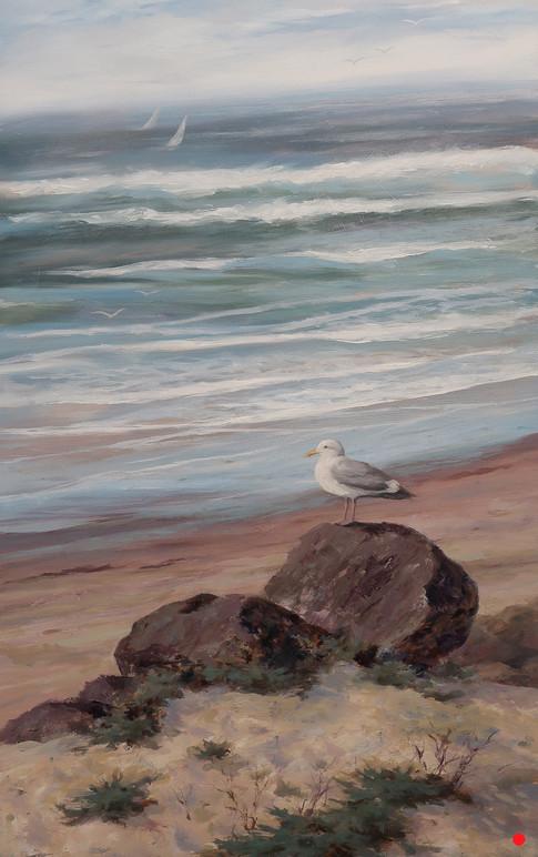 Lone Seagull III