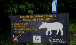 Tapantí, CR.
