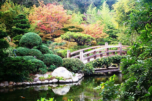 A Bridge into Paradise