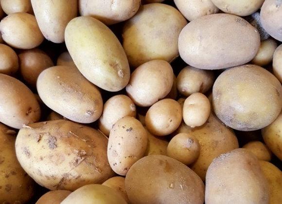 pomme de terre bio nouvelle