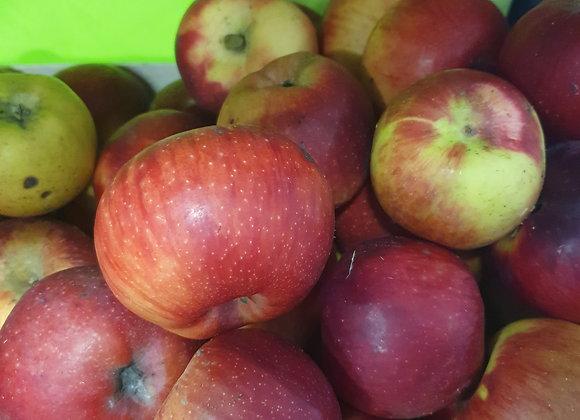 Pommes déclassées bio