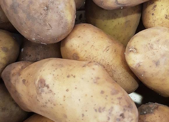 Pomme de terre bio polyvalente