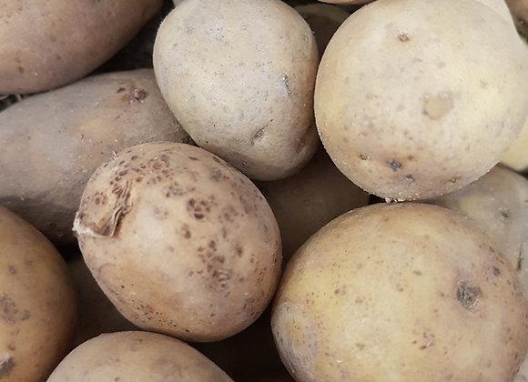 pomme de terre bio chair tendre