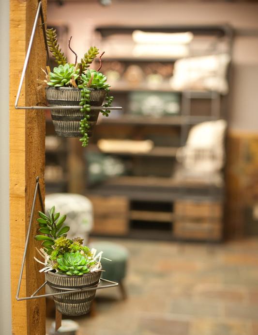 Succulent Wall Hangers