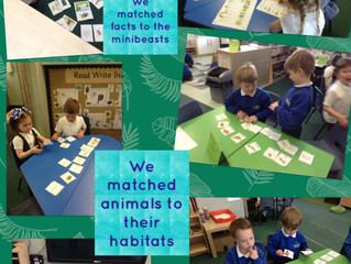 """Bugs alive"" Reception explore minibeasts 🔎"
