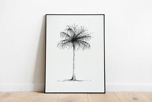"Poster ""Black Palm"""