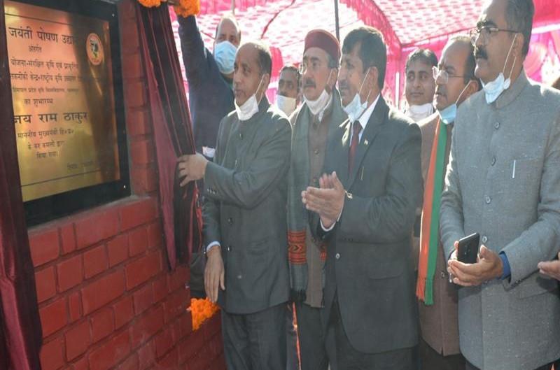 मुख्यमंत्री ने पालमपुर कृषि विश्वविद्यालय में गोल्डन जुबली न्यूट्रिशन गार्डन का शुभारंभ किया