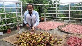 अनारदाना उत्पाद किसानों की अतिरिक्त आय का साधन