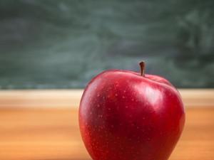 As maçãs e as professoras