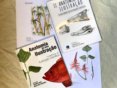 Livro: Anatomia de uma Ilustração