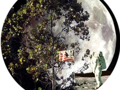 Árvores lunares: as sementes que orbitaram a Lua