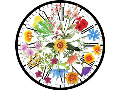 O relógio floral de Lineu