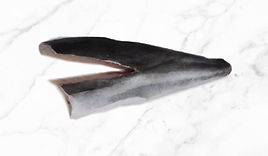 Fresh-Cobia-Fillet-V-Cut-Smaller.jpg