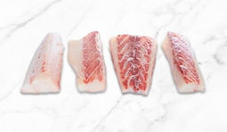 Cobia-Frozen-Portions.jpg