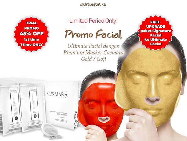 GB Ultimate Facial.png