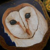 Owl panel on board