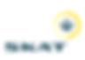 SKAT-logo.png