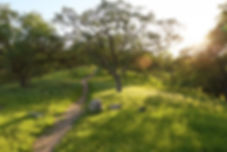 Imagebase41130.jpg