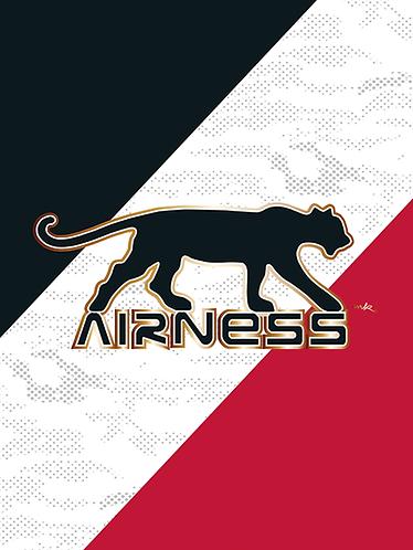 AIRNESS Cross Agenda