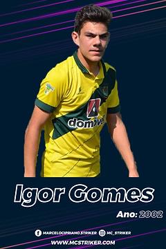 igor-02.png