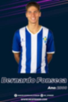 BernardoFonseca-02.png