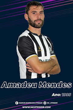 AmadeuMendes-02.png