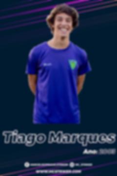 TiagoMarques-02.png