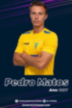 PedroMatos-02.png