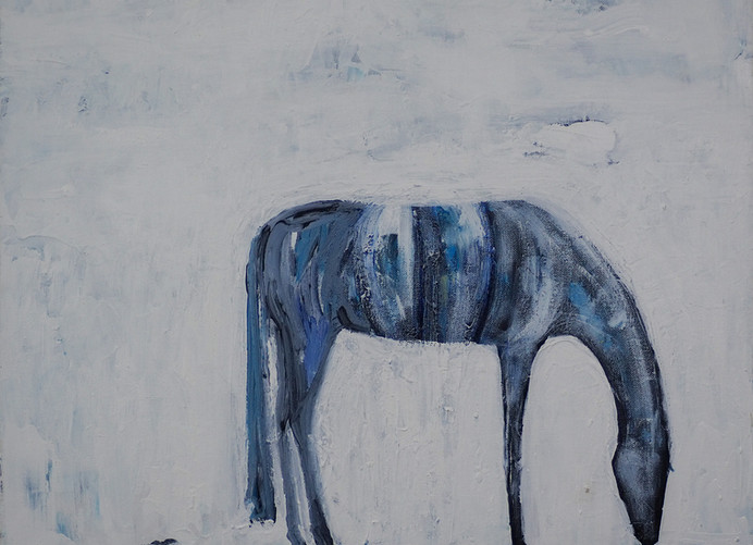 Gentle Horse