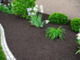 black mulch.jpg
