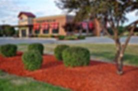 red mulch.jpg