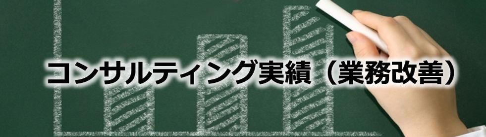 コンサルティング実績(業務改善).jpg