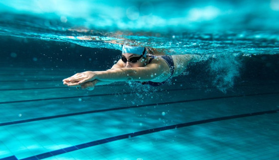 Inscriptions 2020 - 2021 : pour les nageurs déjà membres