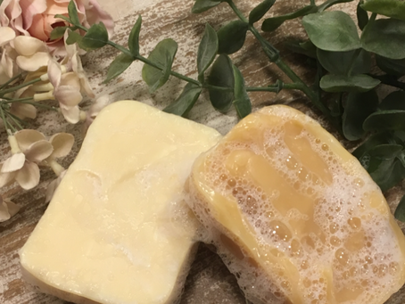 Essential Homemaker Shampoo Bars