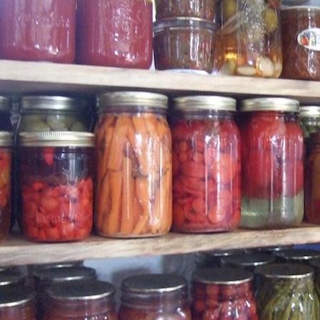 Jars of Fermented Veggies