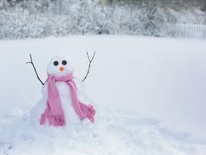 What do Entrepreneurs do on Snow Days?